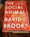 the social animal - 2